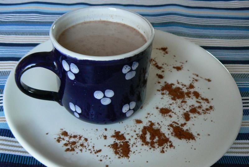 Domácí kakao