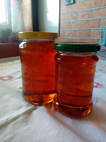 Smrkový med ze samoty u lesa